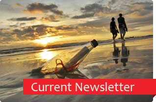 RVI Newsletter  - from the chairmain